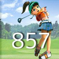 女子ゴルフTVキャプの跡857